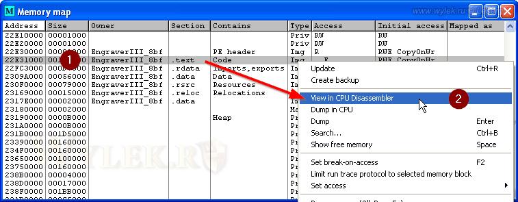 Загрузка секции кода в дизассемблер