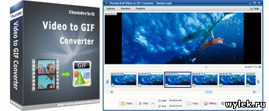 ThunderSoft Video to GIF Converter 1.6.4.0 Rus