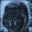 avatar_Gnom