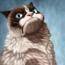 avatar_BullFFm